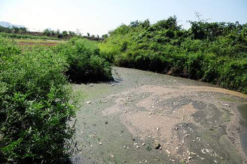 Phát hiện bãi thải ven sông Hồng ngập trắng bao cao su 2