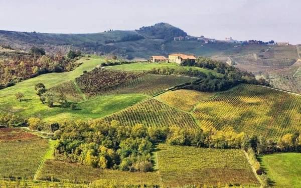 Đập vỡ 40 vạn chai vang Ý ở xưởng rượu trăm tuổi 2