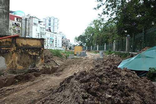 Hà Nội chặt hạ hàng loạt cây xà cừ trong Công viên Thống Nhất 2