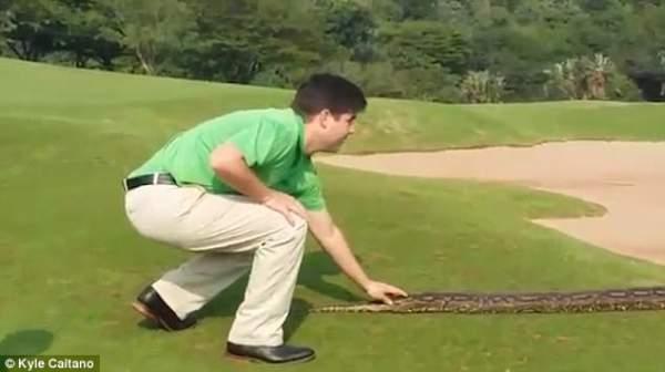 """Video: Trăn """"khủng"""" dài 4 mét đại náo sân golf ở Nam Phi 2"""