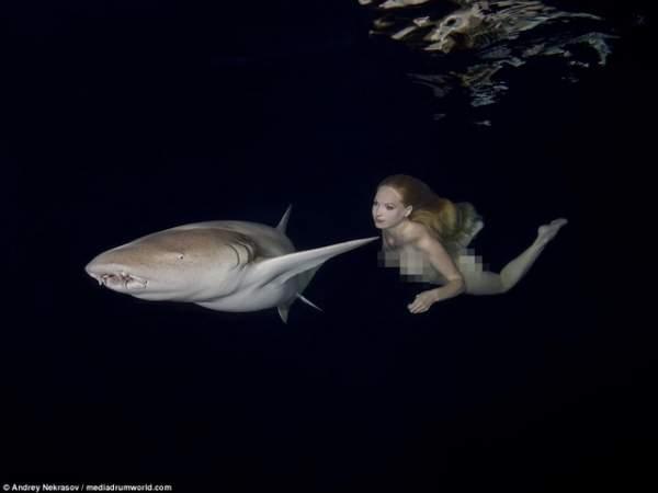 Khỏa thân ung dung bơi cạnh đàn cá mập chết người 3