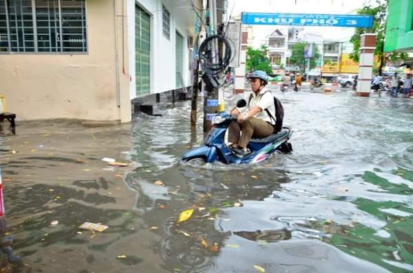 Mưa 20 phút, đường phố Sài Gòn nước chảy như thác đổ 9