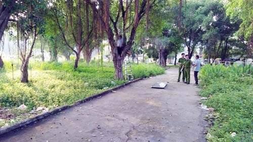 Tá hỏa phát hiện xác người trên cây trong công viên 1
