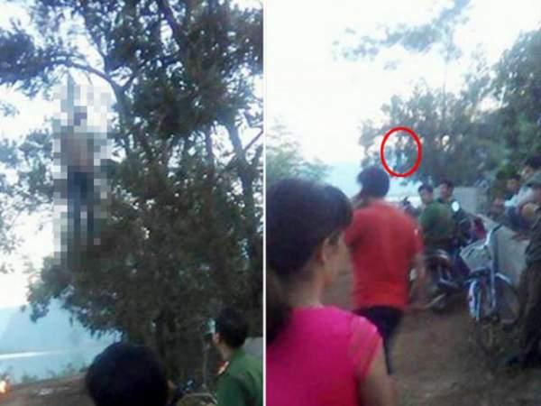 Tá hỏa phát hiện xác người trên cây trong công viên 2