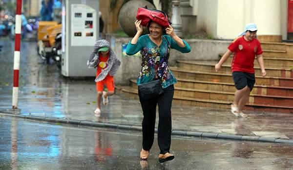 """Ảnh: Người Hà Nội sung sướng đi dưới """"mưa vàng"""" 13"""