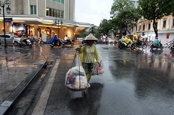 """Ảnh: Người Hà Nội sung sướng đi dưới """"mưa vàng"""" 18"""