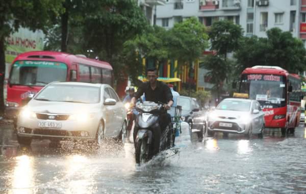 """Ảnh: Người Hà Nội sung sướng đi dưới """"mưa vàng"""" 8"""