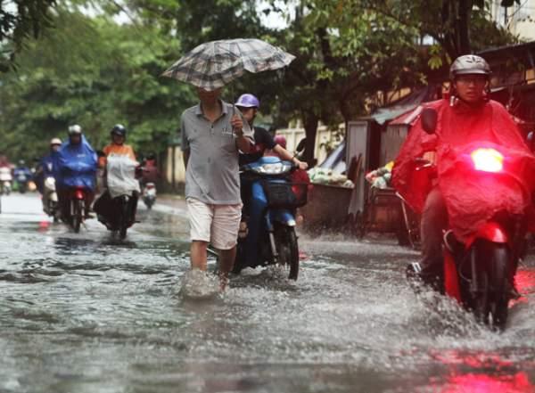 """Ảnh: Người Hà Nội sung sướng đi dưới """"mưa vàng"""" 6"""