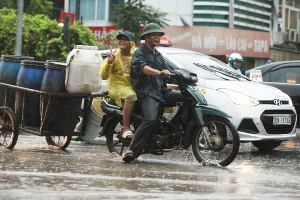 """Ảnh: Người Hà Nội sung sướng đi dưới """"mưa vàng"""" 3"""