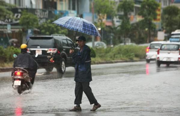 """Ảnh: Người Hà Nội sung sướng đi dưới """"mưa vàng"""" 5"""