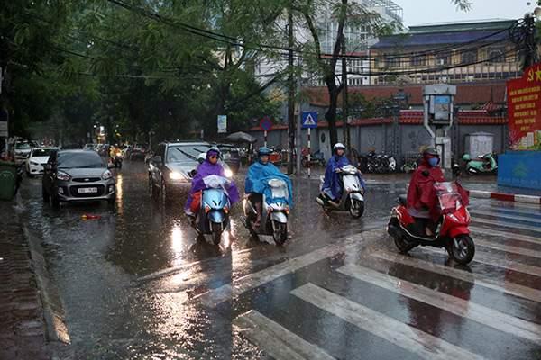 """Ảnh: Người Hà Nội sung sướng đi dưới """"mưa vàng"""" 15"""