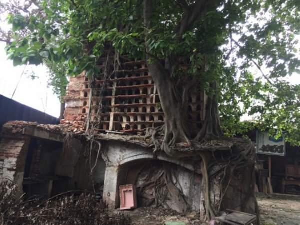 Ngôi đền thiêng và bí ẩn về người Tamil giữa Sài thành 1