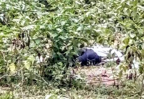 Đi chăn trâu, phát hiện người đàn ông chết nằm sấp trong bụi cây 1