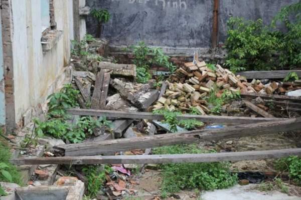 Biệt thự 100 tuổi hoang phế thành nơi trú ngụ của mèo hoang 7