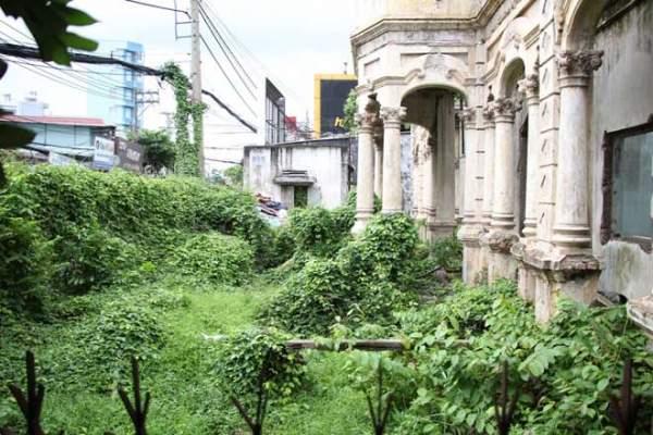 Biệt thự 100 tuổi hoang phế thành nơi trú ngụ của mèo hoang 3
