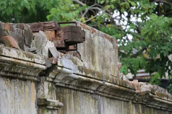 Biệt thự 100 tuổi hoang phế thành nơi trú ngụ của mèo hoang 2