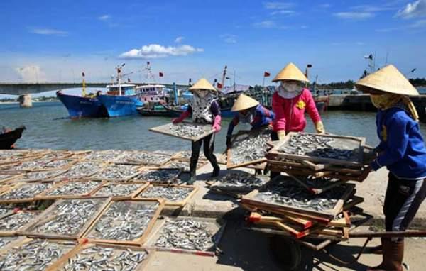 Thủ tướng: Giám sát xử lý chất thải Formosa 24/24h trong 3 năm 1
