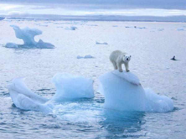 """Chuyện gì đang xảy ra với """"tủ lạnh"""" của Trái Đất? 1"""