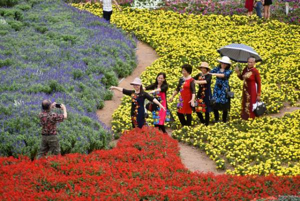 Ngắm nhìn khu vườn 70.000 m2 rực rỡ sắc hoa ở Hà Nội 8