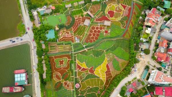 Ngắm nhìn khu vườn 70.000 m2 rực rỡ sắc hoa ở Hà Nội 1