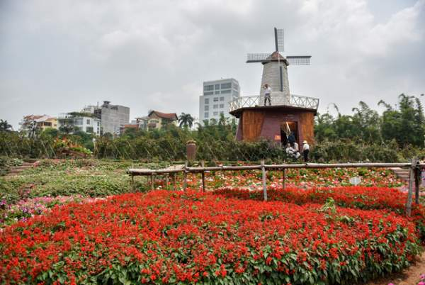 Ngắm nhìn khu vườn 70.000 m2 rực rỡ sắc hoa ở Hà Nội 3