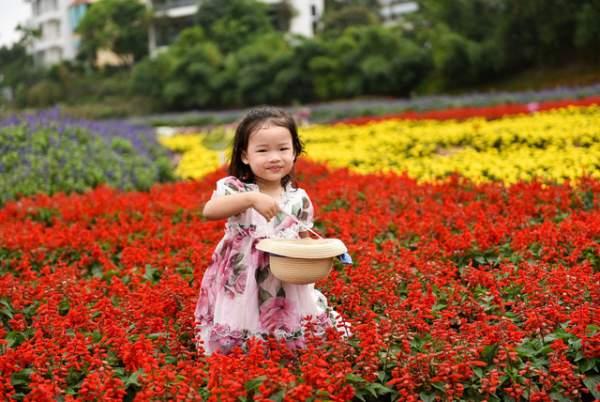 Ngắm nhìn khu vườn 70.000 m2 rực rỡ sắc hoa ở Hà Nội 13