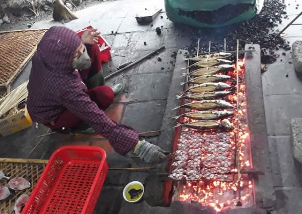 Bình minh ở bến cá lâu đời xứ Nghệ 10