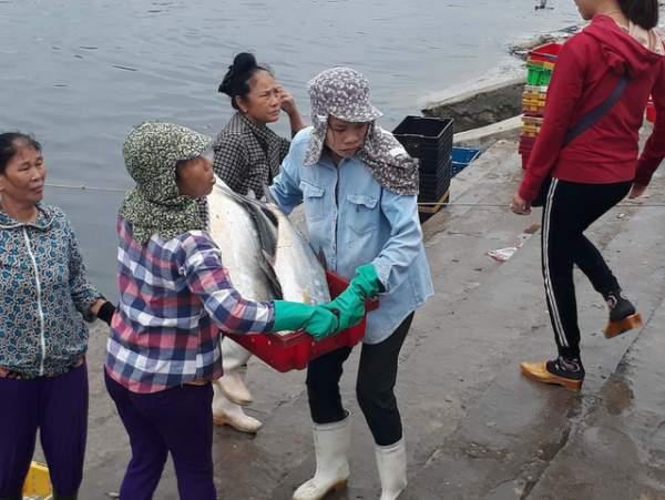 Bình minh ở bến cá lâu đời xứ Nghệ 6