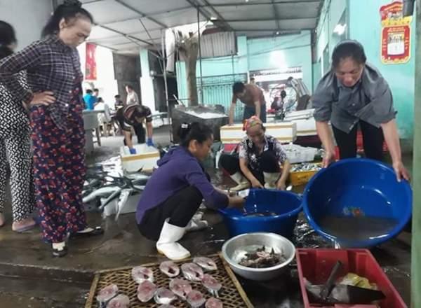 Bình minh ở bến cá lâu đời xứ Nghệ 2