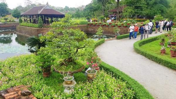 Hơn 1.000 cây kiểng, phong lan tỏa hương sắc tại Hoàng cung Huế 10