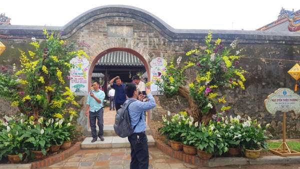 Hơn 1.000 cây kiểng, phong lan tỏa hương sắc tại Hoàng cung Huế 11