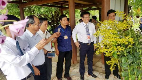 Hơn 1.000 cây kiểng, phong lan tỏa hương sắc tại Hoàng cung Huế 1