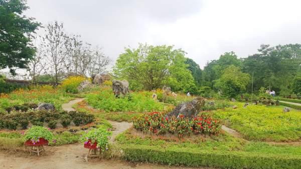 Hơn 1.000 cây kiểng, phong lan tỏa hương sắc tại Hoàng cung Huế 5