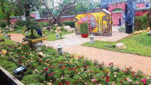 Hơn 1.000 cây kiểng, phong lan tỏa hương sắc tại Hoàng cung Huế 16