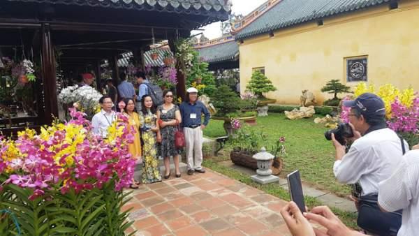 Hơn 1.000 cây kiểng, phong lan tỏa hương sắc tại Hoàng cung Huế 12