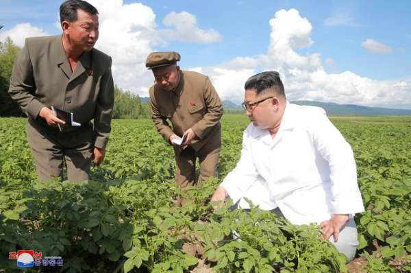 Lợi thế của Việt Nam khi cải cách kinh tế và hình mẫu cho Triều Tiên 1