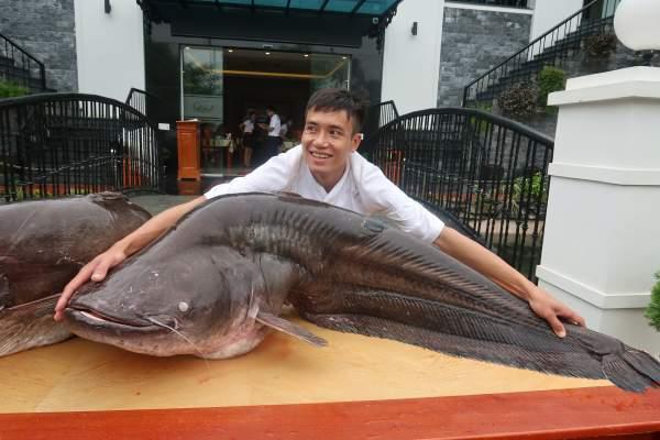 """Choáng với cặp cá leo """"khủng"""" nặng hơn 1 tạ xuất hiện ở Bắc Ninh 2"""