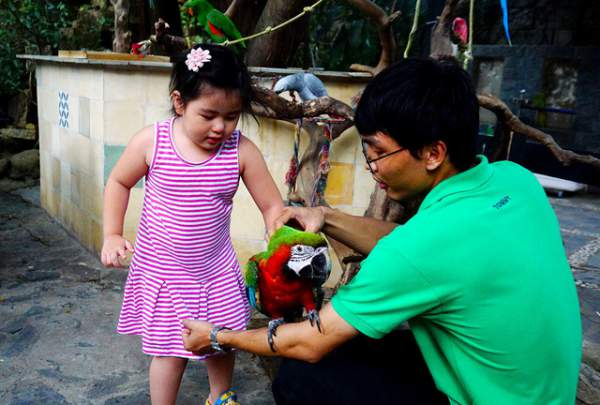 Thích thú với quán cà phê nuôi đầy vẹt ở Sài Gòn 2