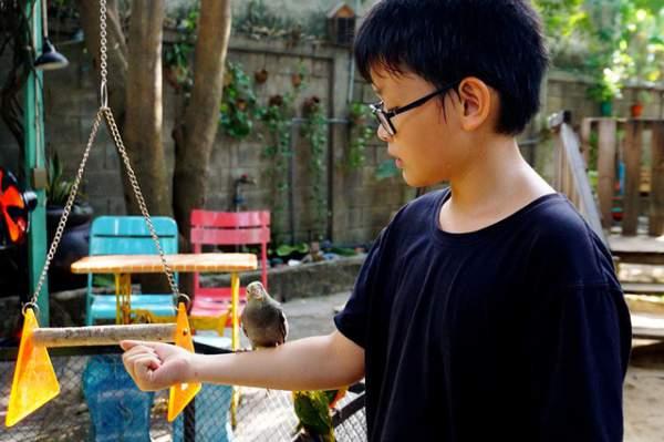 Thích thú với quán cà phê nuôi đầy vẹt ở Sài Gòn 8