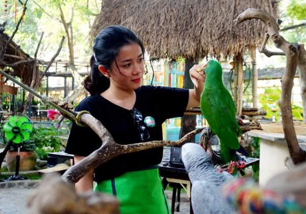 Thích thú với quán cà phê nuôi đầy vẹt ở Sài Gòn 7